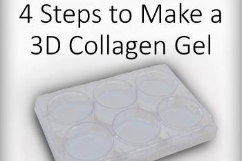 link to library blog - 4 Key Components for 3D Collagen Gels