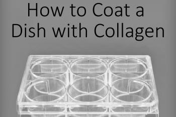 link to library blog - Coating Plates with Collagen